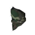 banditmask1.png