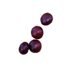 berries_seed.png