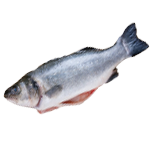raw_fish.png